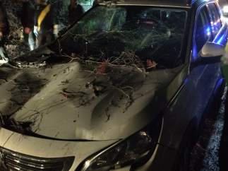 Efecto de la caída de un árbol sobre un coche en Jete (Granada)