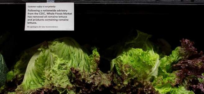 Alerta alimentaria sobre lechuga romana