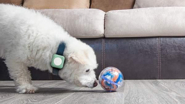Universall, el 'gadget' que convierte cualquier objeto cotidiano en inteligente