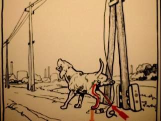 El perro descuidado