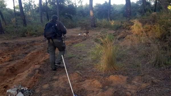 Unidad canina de Protección Civil