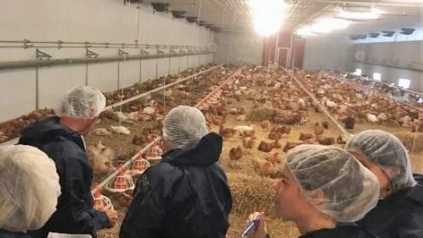 Participantes en el curso durante una visita a una granja