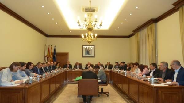 La DPT ha celebrado sesión plenaria
