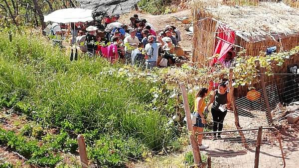 Huerto en Almócita (Almería)