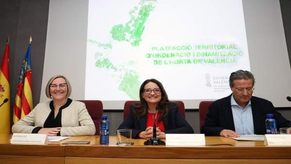 El Consell blinda 11.000 hectàrees d'horta