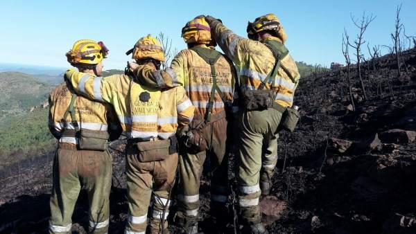 Les Corts donen llum verda a la creació de la societat d'emergències en la qual s'integraran bombers forestals