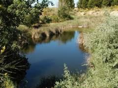 Lagunas de Horna, en Perales del Río (Getafe)