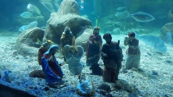 Belén submarino en Sea Life Benalmádena