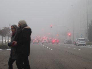 Paseo entre la niebla