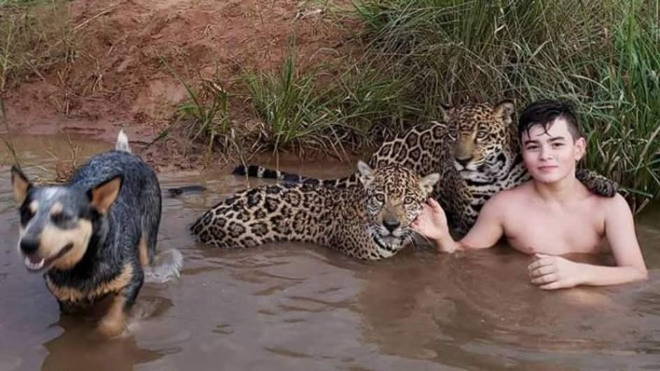 La foto de Tiago bañándose con dos jaguares que se hizo viral