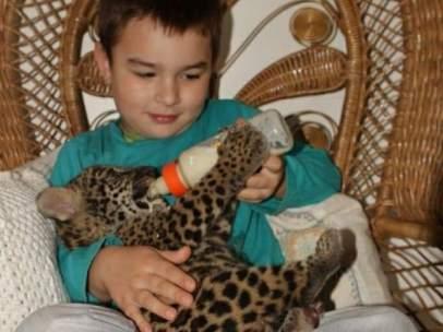 Tiago de pequeño alimentando a un jaguar