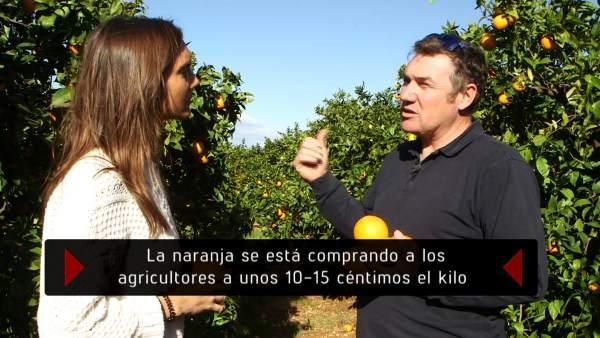 El zumo de naranja, en 'En el punto de mira'.