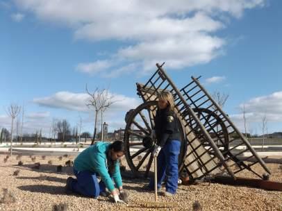 Imagen de mujeres trabajando en el campo