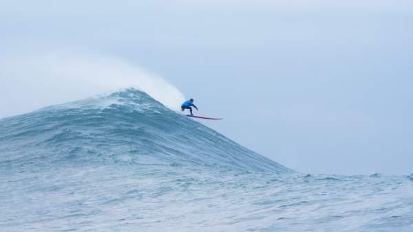 Vaca Gigante. Ola. Surf. Surfero.