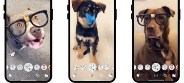 Filtros de Snapchat para perros
