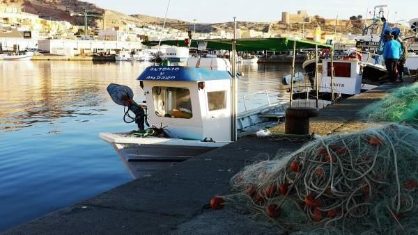 Atraques del puerto pesquero de Almería