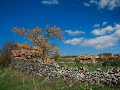 Pozalmuro (Soria) despoblación