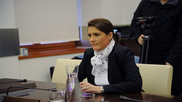 Elisa Barrientos, en la comisión de la Asamblea