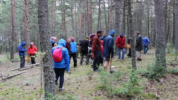 Asistentes a una de las actividades en la naturaleza en el Maestrazgo