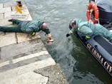 Rescate perra en bahía Santander