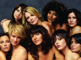 'The L Word'