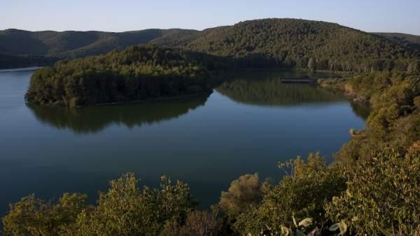 Parc del Foix.