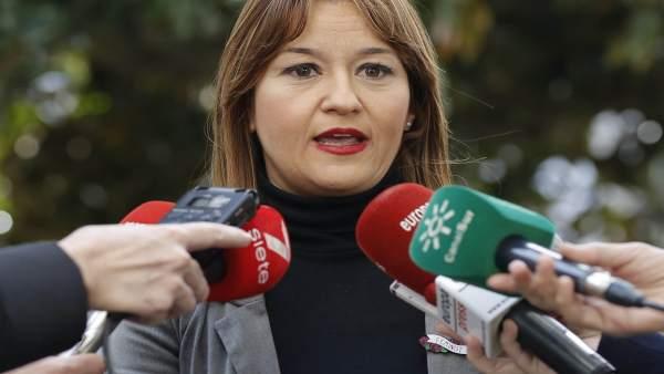 Verónica Pérez, en una rueda de prensa anterior