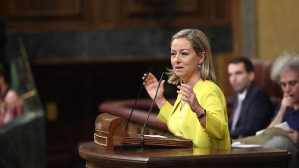 Ana Oramas interviene en el Congreso