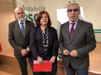 Rueda de prensa en la sede provincial del PSOE de Granada