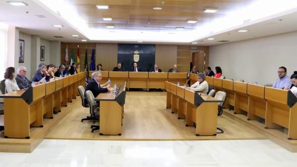 Pleno del Ayuntamiento de El Ejido