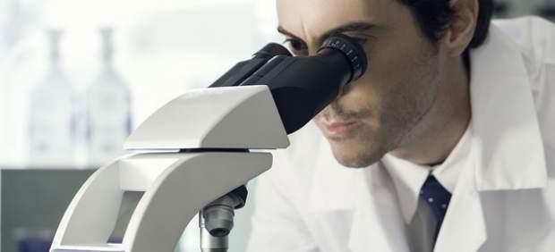Las células del páncreas se pueden reprogramar para producir insulina