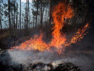 Arden los montes de Cantabria
