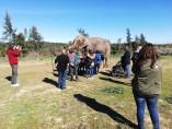 elefanta Dumba
