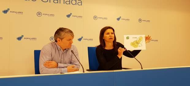 El PP pide al PSOE esperar todos los informes de las administraciones para la macrogranja de Dehesas de Guadix