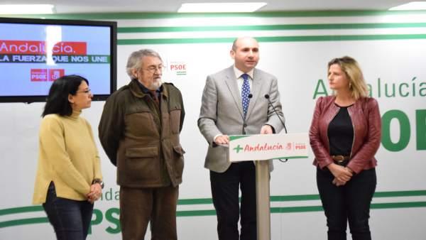 El PSOE insta a la Junta a reactivar el proyecto del auditorio