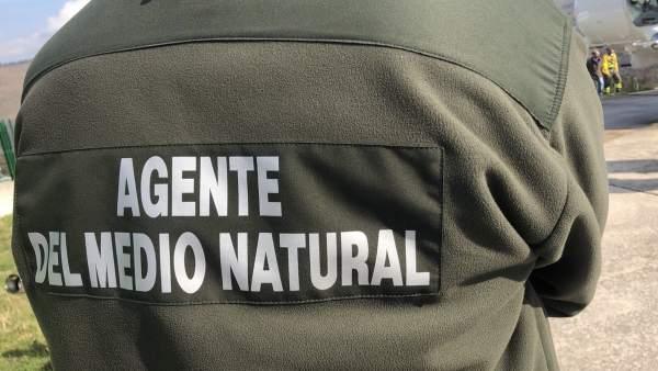 Cantabria cierra febrero con 334 incendios forestales
