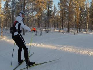 El esquiador austriaco Max Hauke