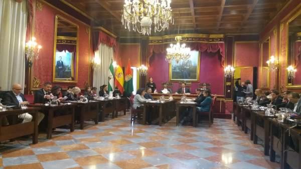 Pleno del Ayuntamiento de Granada, reunido para aprobar una ordenanza fiscal par