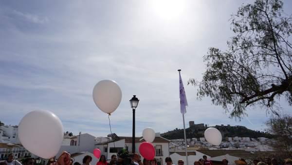 Teba se une a la Red de Municipios por la Paz y los Valores Unesco y recuerda a
