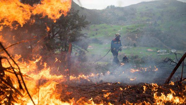 Asturias registra 77 incendios activos con llamas de hasta 30 metros por el fuerte viento