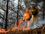 Luchando contra el fuego en Cantabria