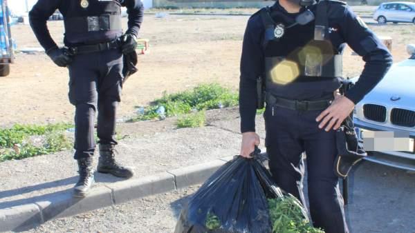 [Grupoalmeria] Nota De Prensa Y Fotografía: La Policía Nacional Incauta 40 Kilog