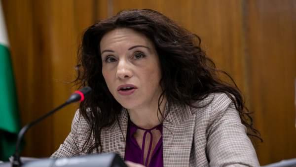 Ruiz reprocha a Vox que 'actúe con brocha gorda' y 'criminalice' al colectivo de