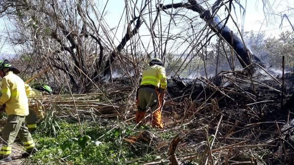 Málaga.- Sucesos.- Estabilizado un incendio en el paraje Río Grande de Cártama