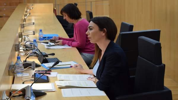 Ciudadanos (Cs) | Ciudadanos Logra Que Diputación Prepare Una Ordenanza Para Pro