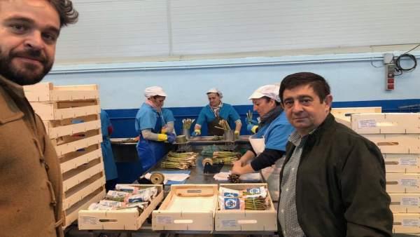 Jaén.- MásJaén.- El municipio de Bedmar y Garcíez inicia la campaña de recogida