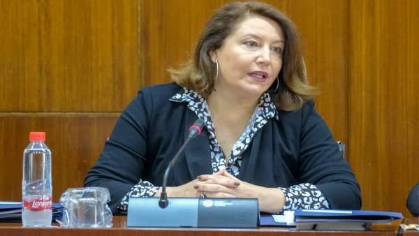 Almería.- Junta trabaja en la 'solución apropiada y definitiva' que regule el ac