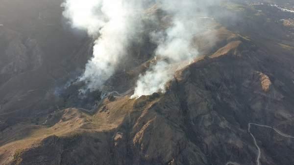 AMP.- Sucesos.- Declarado un incendio en un palmeral de Fataga (Gran Canaria)