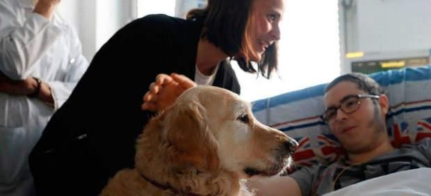 Zenit, el perro que se