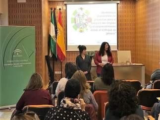 Jaén.- El IAM acoge un curso sobre elaboración de proyectos para el empleo y emp